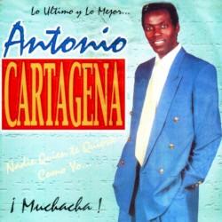Antonio Cartagena - Necesito un Amor